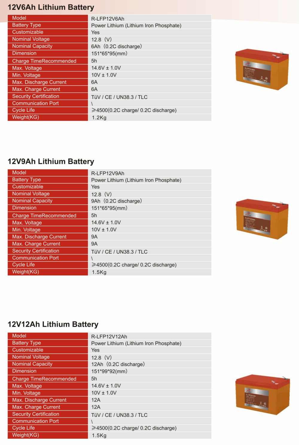 12V Lithium  Iron Phosphate Battery(图1)